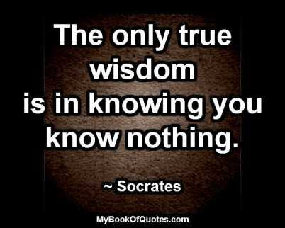 The only true wisdom is in knowing you know nothing. ~ Socrates