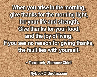 When you arise in the morning, give thanks for the morning light, for your life and strength. Give thanks for your food, and the joy of living. If you see no reason for giving thanks, the fault lies with yourself. ~ Tecumseh, Shawnee Chief