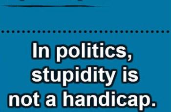 In politics, stupidity is not a handicap. ~ Napoleon Bonaparte