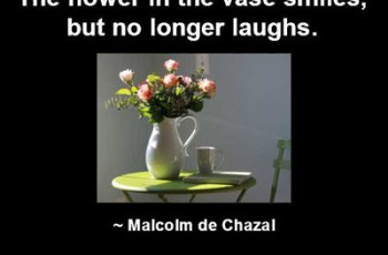 The flower in the vase smiles, but no longer laughs. ~ Malcolm de Chazal