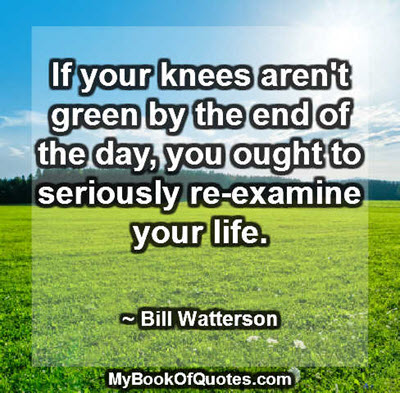 If your knees aren't green by the end of the day, you ought to seriously re-examine your life. ~ Bill Watterson