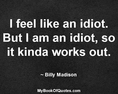 I feel like an idiot. But I am an idiot, so it kinda works out. ~ Billy Madison