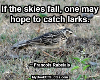 If the skies fall, one may hope to catch larks. ~ Francois Rabelais