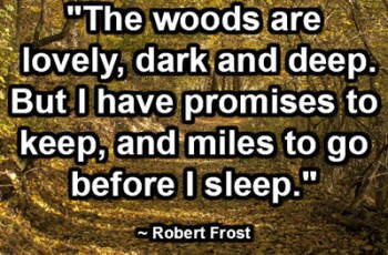 """The woods are lovely, dark and deep. But I have promises to keep, and miles to go before I sleep."" ~ Robert Frost"