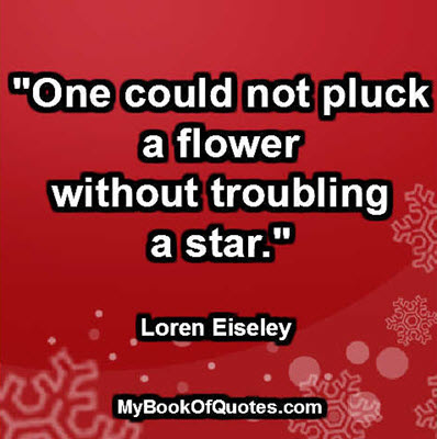 """""""One could not pluck a flower without troubling a star."""" ~ Loren Eiseley"""