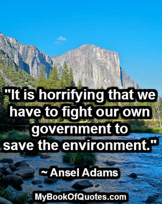 """""""It is horrifying that we have to fight our own government to save the environment."""" ~ Ansel Adams"""