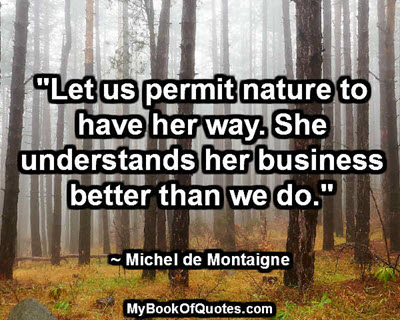 """""""Let us permit nature to have her way. She understands her business better than we do."""" ~ Michel de Montaigne"""