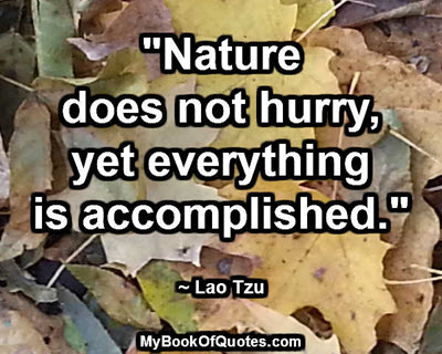 """Nature does not hurry, yet everything is accomplished."" ~ Lao Tzu"