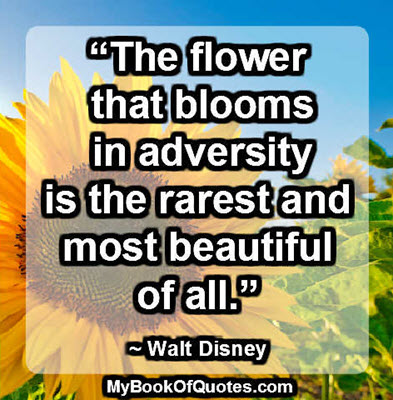 """""""The flower that blooms in adversity is the rarest and most beautiful of all."""" ~ Walt Disney"""