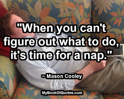 """""""When you can't figure out what to do, it's time for a nap."""" ~ Mason Cooley"""