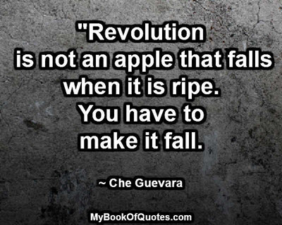 """Revolution is not an apple that falls when it is ripe. You have to make it fall.""  ~ Che Guevara"