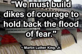 """We must build dikes of courage to hold back the flood of fear."" ~ Martin Luther King, Jr."