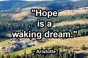 Hope is a waking dream