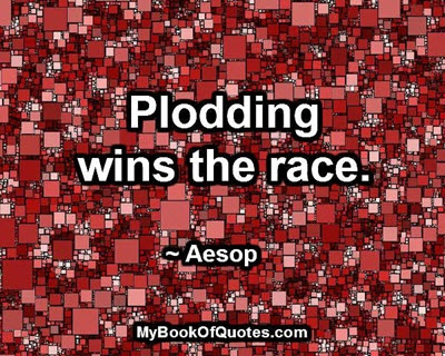 Plodding wins the race