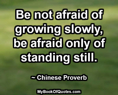 Be not afraid of growing slowly, be afraid only of standing still. ~ Chinese Proverb