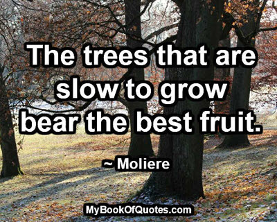The best fruit