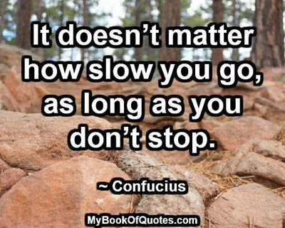 It doesn't matter how slow you go, as long as you don't stop. ~ Confucius