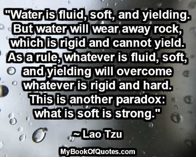 """Water is fluid, soft, and yielding. But water will wear away rock, which is rigid and cannot yield. As a rule, whatever is fluid, soft, and yielding will overcome whatever is rigid and hard. This is another paradox: what is soft is strong.""  ~ Lao Tzu"