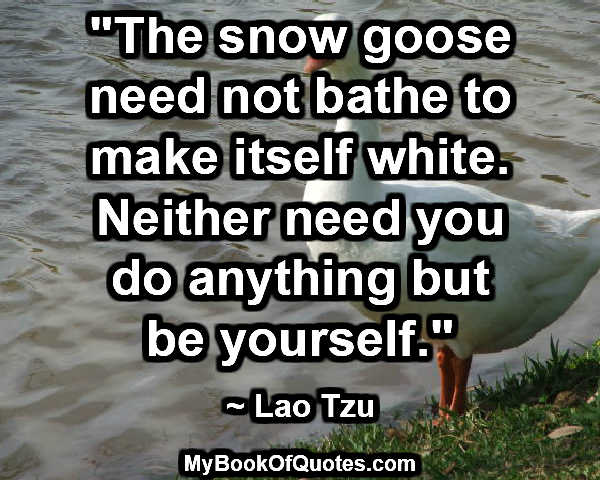 """The snow goose need not bathe to make itself white. Neither need you do anything but be yourself."" ~ Lao Tzu"