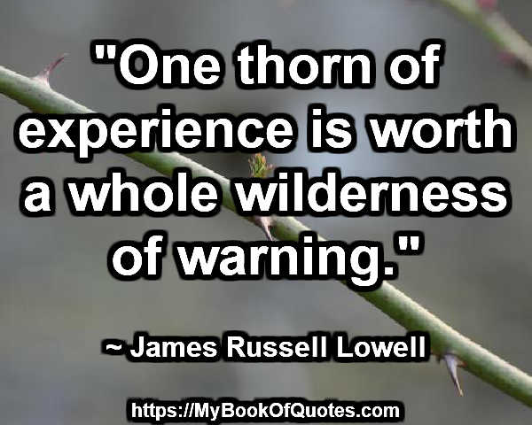 one thorn of experience
