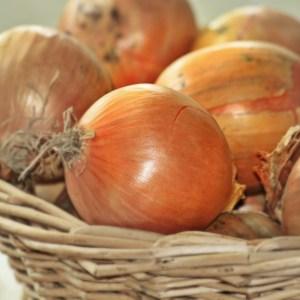 beer caramalised onions