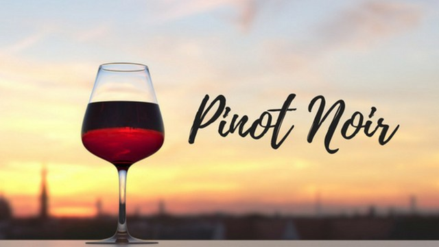 Wine Talk: The Holy Grail of Wine – Pinot Noir