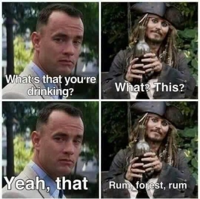 meme about rum forrest gump and captain jack