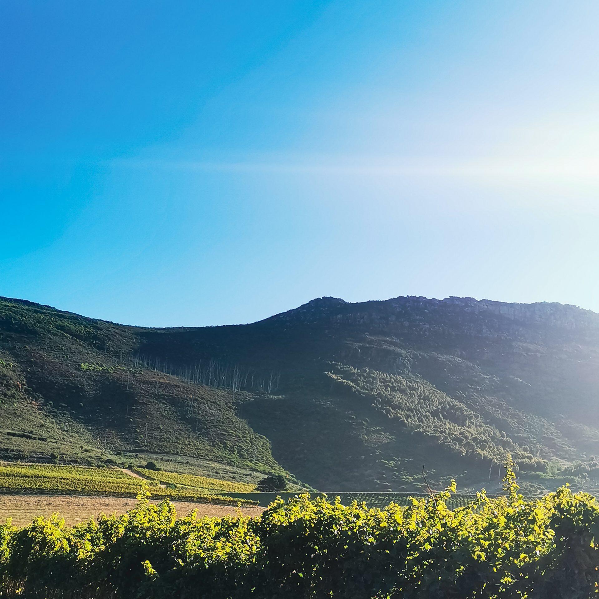 views at Steenberg