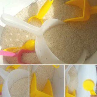 simple-rice-sensory-bin-1-320x320