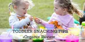 Toddler Snack Tips