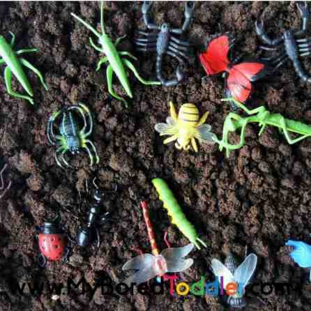 insects sensory bin for toddlers taste safe toddler activity.