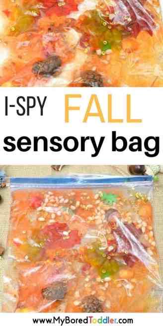 Toddler Fall Sensory Bag Autumn sensory play #sensorybag #sensoryplay #toddleractivity #toddleractivities