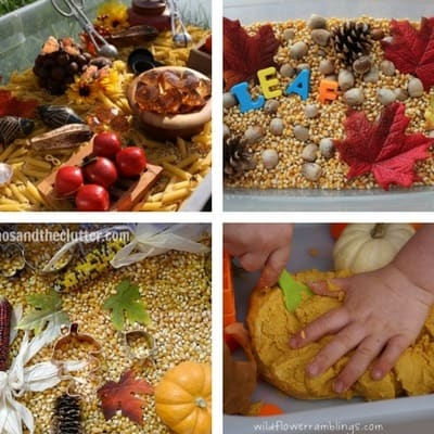 autumn fall sensory bins for toddlers 2 and 3 year olds 2