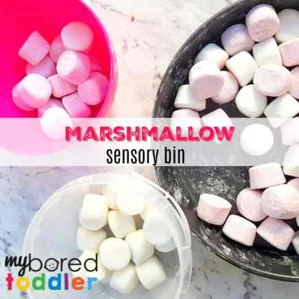 marshmallow sensory bin feature