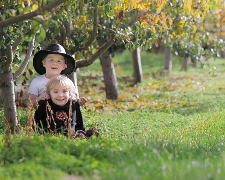 brother and sister posing in apple orchard