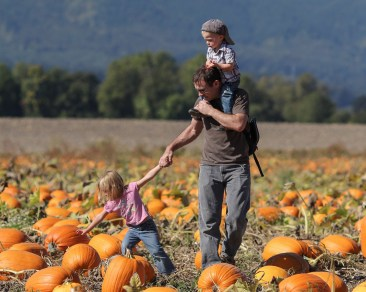 Dad with son on shoulders and holding daughter's hand in pumpkin patch