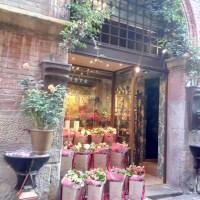 Bologna flower Shop...