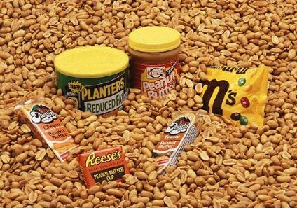 Peanut_products-424x297-1