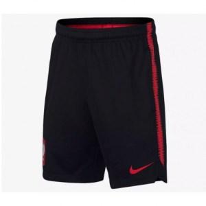 Shorts Nike Polska Dry Squad Junior 893825-010