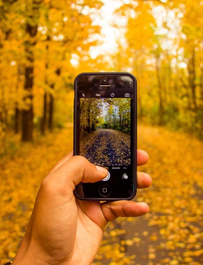 Wyzwanie fotograficzne wrzesień 2018