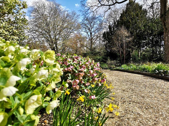 Wiosna w Hampshire