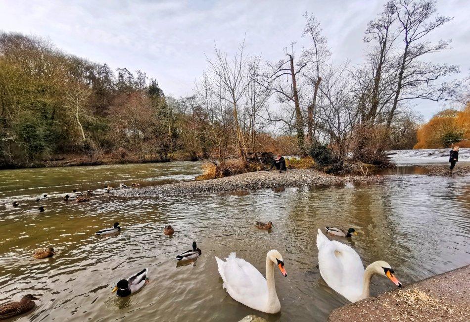 dzień w Ludlow- rzeka Teme