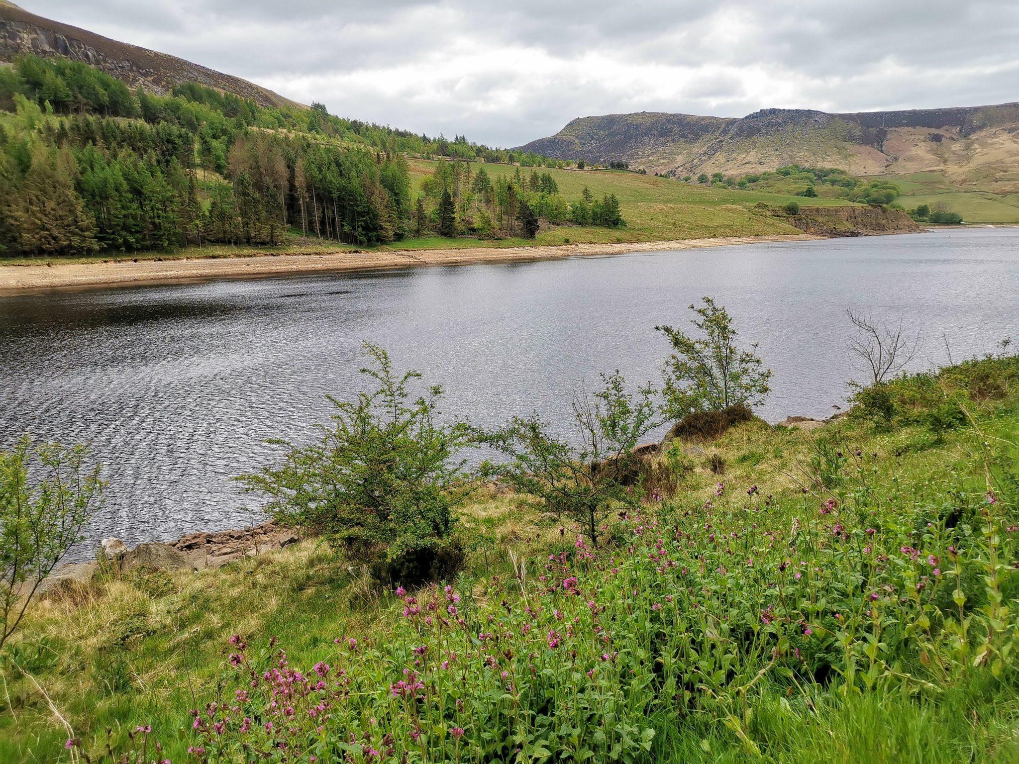 widok na zbiornik wodny