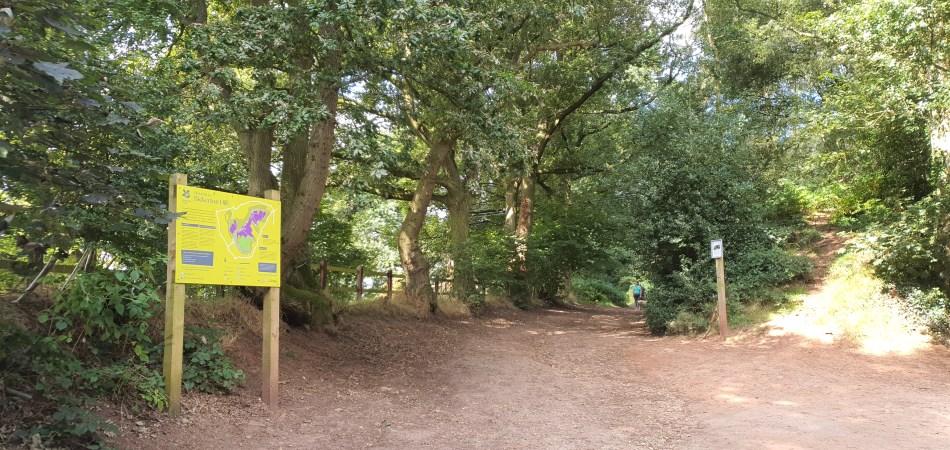 wędrówka Bickerton Hill