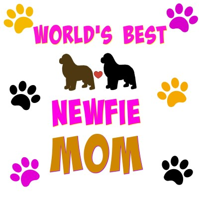15 Reasons Why Newfie Moms Rock