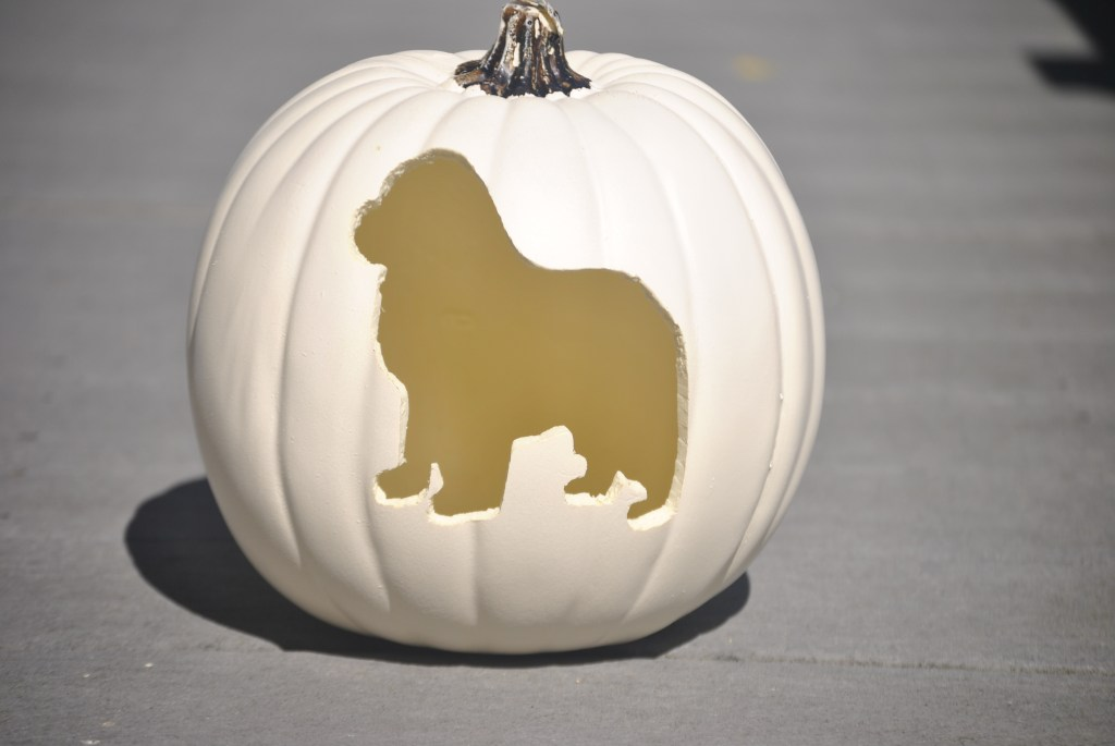 Pumpkin with Newfoundland dog cut out pattern