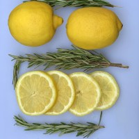 Homemade Lemon Mosquito Repellent For Dogs