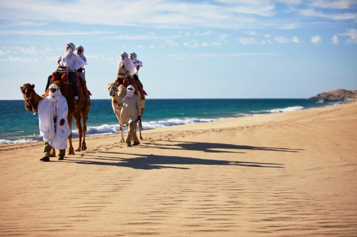 camels-in-cabo