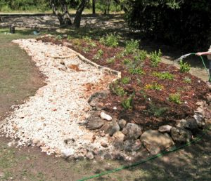 DIY Rain Gardens @ Texas AgriLife Extension Comal County | New Braunfels | Texas | United States