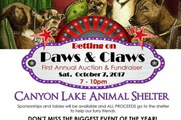 poster for Paws & Claws
